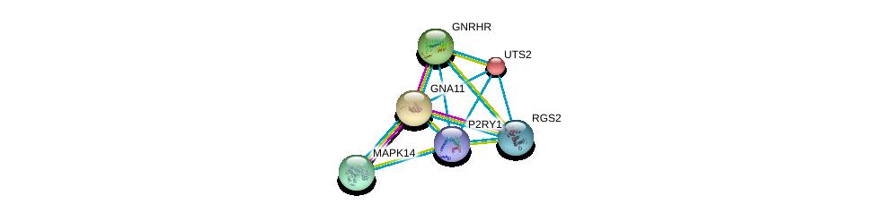 http://string-db.org/version_10/api/image/networkList?limit=0&targetmode=proteins&caller_identity=gene_cards&network_flavor=evidence&identifiers=9606.ENSP00000304767%0d%0a9606.ENSP00000054668%0d%0a9606.ENSP00000078429%0d%0a9606.ENSP00000226413%0d%0a9606.ENSP00000229794%0d%0a9606.ENSP00000235382%0d%0a