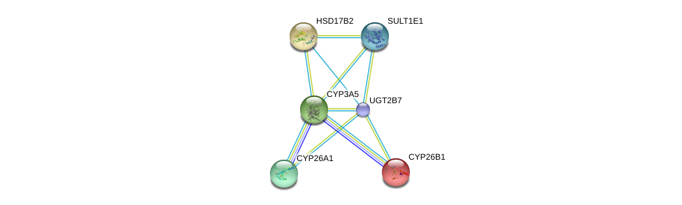 http://string-db.org/version_10/api/image/networkList?limit=0&targetmode=proteins&caller_identity=gene_cards&network_flavor=evidence&identifiers=9606.ENSP00000304811%0d%0a9606.ENSP00000001146%0d%0a9606.ENSP00000199936%0d%0a9606.ENSP00000222982%0d%0a9606.ENSP00000224356%0d%0a9606.ENSP00000226444%0d%0a