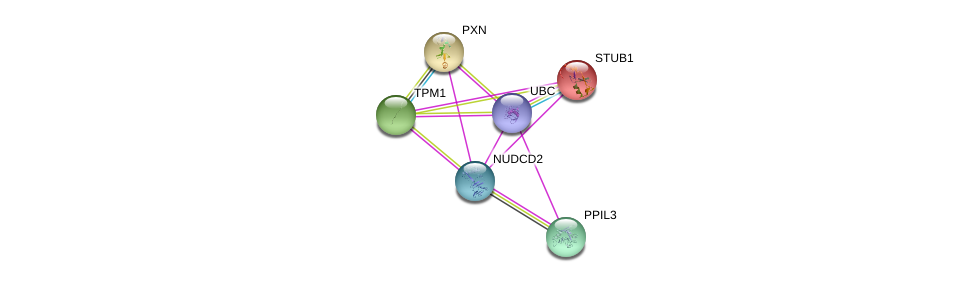 http://string-db.org/version_10/api/image/networkList?limit=0&targetmode=proteins&caller_identity=gene_cards&network_flavor=evidence&identifiers=9606.ENSP00000304854%0d%0a9606.ENSP00000228307%0d%0a9606.ENSP00000344818%0d%0a9606.ENSP00000219548%0d%0a9606.ENSP00000267996%0d%0a9606.ENSP00000286175%0d%0a