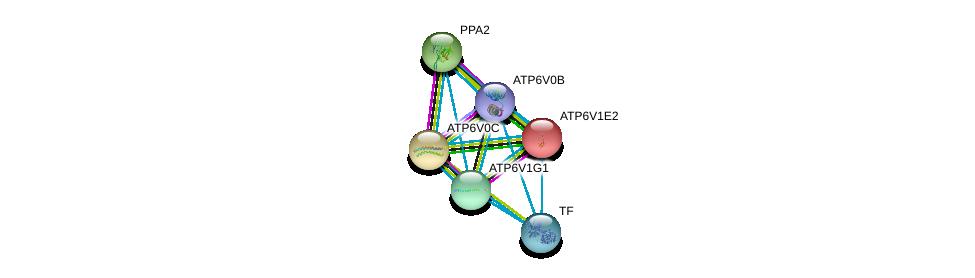 http://string-db.org/version_10/api/image/networkList?limit=0&targetmode=proteins&caller_identity=gene_cards&network_flavor=evidence&identifiers=9606.ENSP00000304891%0d%0a9606.ENSP00000363162%0d%0a9606.ENSP00000431605%0d%0a9606.ENSP00000329757%0d%0a9606.ENSP00000343885%0d%0a9606.ENSP00000385834%0d%0a