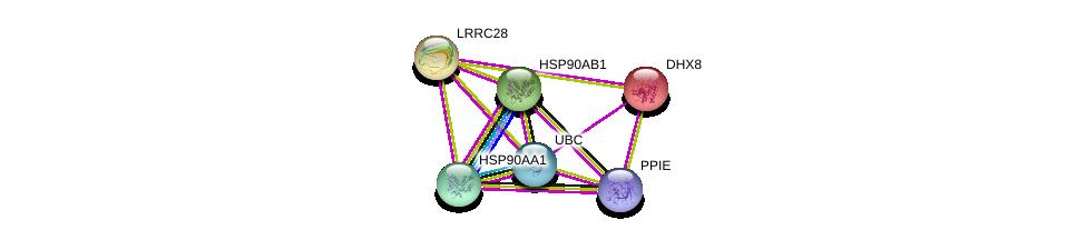 http://string-db.org/version_10/api/image/networkList?limit=0&targetmode=proteins&caller_identity=gene_cards&network_flavor=evidence&identifiers=9606.ENSP00000304923%0d%0a9606.ENSP00000344818%0d%0a9606.ENSP00000262415%0d%0a9606.ENSP00000361918%0d%0a9606.ENSP00000335153%0d%0a9606.ENSP00000325875%0d%0a