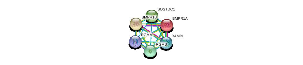 http://string-db.org/version_10/api/image/networkList?limit=0&targetmode=proteins&caller_identity=gene_cards&network_flavor=evidence&identifiers=9606.ENSP00000304930%0d%0a9606.ENSP00000264568%0d%0a9606.ENSP00000308219%0d%0a9606.ENSP00000452126%0d%0a9606.ENSP00000364683%0d%0a9606.ENSP00000224764%0d%0a