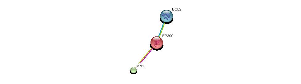 http://string-db.org/version_10/api/image/networkList?limit=0&targetmode=proteins&caller_identity=gene_cards&network_flavor=evidence&identifiers=9606.ENSP00000304956%0d%0a9606.ENSP00000263253%0d%0a9606.ENSP00000329623%0d%0a