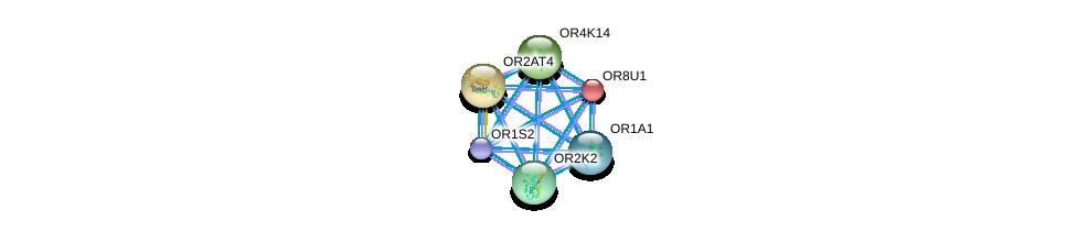 http://string-db.org/version_10/api/image/networkList?limit=0&targetmode=proteins&caller_identity=gene_cards&network_flavor=evidence&identifiers=9606.ENSP00000305055%0d%0a9606.ENSP00000305011%0d%0a9606.ENSP00000305207%0d%0a9606.ENSP00000304846%0d%0a9606.ENSP00000305469%0d%0a9606.ENSP00000304188%0d%0a