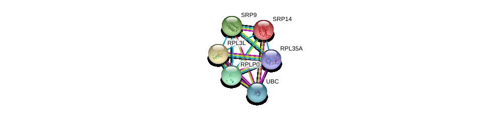 http://string-db.org/version_10/api/image/networkList?limit=0&targetmode=proteins&caller_identity=gene_cards&network_flavor=evidence&identifiers=9606.ENSP00000305230%0d%0a9606.ENSP00000267884%0d%0a9606.ENSP00000344818%0d%0a9606.ENSP00000268661%0d%0a9606.ENSP00000393393%0d%0a9606.ENSP00000339027%0d%0a