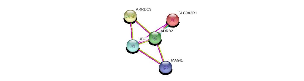 http://string-db.org/version_10/api/image/networkList?limit=0&targetmode=proteins&caller_identity=gene_cards&network_flavor=evidence&identifiers=9606.ENSP00000305372%0d%0a9606.ENSP00000344818%0d%0a9606.ENSP00000262613%0d%0a9606.ENSP00000262613%0d%0a9606.ENSP00000265138%0d%0a9606.ENSP00000385450%0d%0a