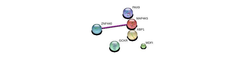 http://string-db.org/version_10/api/image/networkList?limit=0&targetmode=proteins&caller_identity=gene_cards&network_flavor=evidence&identifiers=9606.ENSP00000305373%0d%0a9606.ENSP00000216037%0d%0a9606.ENSP00000355245%0d%0a9606.ENSP00000013125%0d%0a9606.ENSP00000264717%0d%0a9606.ENSP00000230321%0d%0a