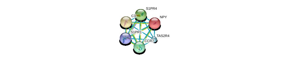 http://string-db.org/version_10/api/image/networkList?limit=0&targetmode=proteins&caller_identity=gene_cards&network_flavor=evidence&identifiers=9606.ENSP00000305416%0d%0a9606.ENSP00000242152%0d%0a9606.ENSP00000245907%0d%0a9606.ENSP00000246115%0d%0a9606.ENSP00000246657%0d%0a9606.ENSP00000247881%0d%0a