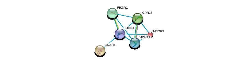 http://string-db.org/version_10/api/image/networkList?limit=0&targetmode=proteins&caller_identity=gene_cards&network_flavor=evidence&identifiers=9606.ENSP00000305416%0d%0a9606.ENSP00000247879%0d%0a9606.ENSP00000262493%0d%0a9606.ENSP00000272644%0d%0a9606.ENSP00000274335%0d%0a9606.ENSP00000281806%0d%0a