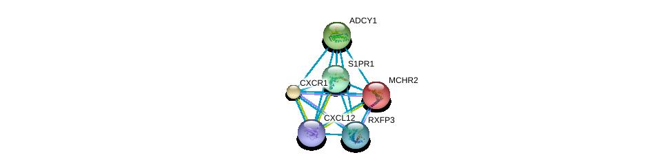 http://string-db.org/version_10/api/image/networkList?limit=0&targetmode=proteins&caller_identity=gene_cards&network_flavor=evidence&identifiers=9606.ENSP00000305416%0d%0a9606.ENSP00000328708%0d%0a9606.ENSP00000295683%0d%0a9606.ENSP00000297323%0d%0a9606.ENSP00000379140%0d%0a9606.ENSP00000281806%0d%0a