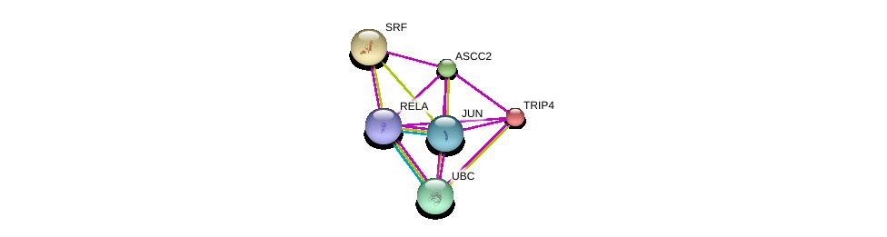 http://string-db.org/version_10/api/image/networkList?limit=0&targetmode=proteins&caller_identity=gene_cards&network_flavor=evidence&identifiers=9606.ENSP00000305502%0d%0a9606.ENSP00000344818%0d%0a9606.ENSP00000265354%0d%0a9606.ENSP00000360266%0d%0a9606.ENSP00000384273%0d%0a9606.ENSP00000261884%0d%0a