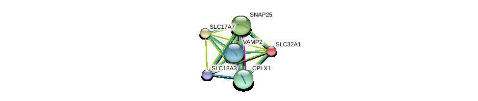 http://string-db.org/version_10/api/image/networkList?limit=0&targetmode=proteins&caller_identity=gene_cards&network_flavor=evidence&identifiers=9606.ENSP00000305613%0d%0a9606.ENSP00000254976%0d%0a9606.ENSP00000314214%0d%0a9606.ENSP00000217420%0d%0a9606.ENSP00000221485%0d%0a9606.ENSP00000363229%0d%0a