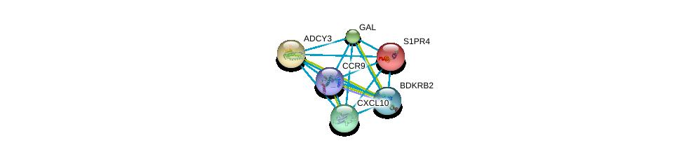 http://string-db.org/version_10/api/image/networkList?limit=0&targetmode=proteins&caller_identity=gene_cards&network_flavor=evidence&identifiers=9606.ENSP00000305651%0d%0a9606.ENSP00000265643%0d%0a9606.ENSP00000350256%0d%0a9606.ENSP00000246115%0d%0a9606.ENSP00000307713%0d%0a9606.ENSP00000260600%0d%0a