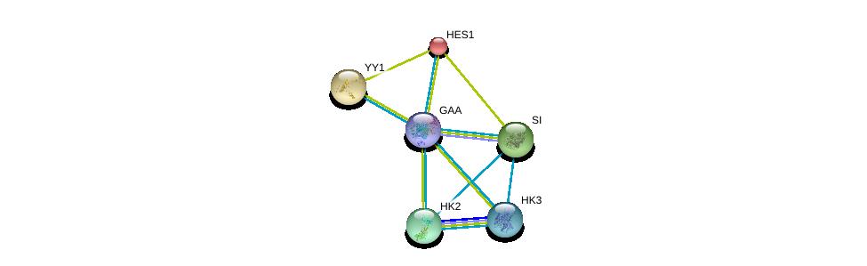 http://string-db.org/version_10/api/image/networkList?limit=0&targetmode=proteins&caller_identity=gene_cards&network_flavor=evidence&identifiers=9606.ENSP00000305692%0d%0a9606.ENSP00000232424%0d%0a9606.ENSP00000262238%0d%0a9606.ENSP00000264382%0d%0a9606.ENSP00000290573%0d%0a9606.ENSP00000292432%0d%0a