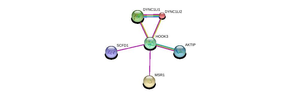 http://string-db.org/version_10/api/image/networkList?limit=0&targetmode=proteins&caller_identity=gene_cards&network_flavor=evidence&identifiers=9606.ENSP00000305699%0d%0a9606.ENSP00000378152%0d%0a9606.ENSP00000390783%0d%0a9606.ENSP00000258198%0d%0a9606.ENSP00000273130%0d%0a9606.ENSP00000262101%0d%0a