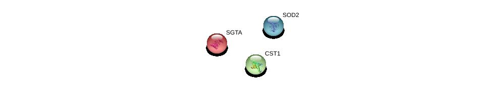 http://string-db.org/version_10/api/image/networkList?limit=0&targetmode=proteins&caller_identity=gene_cards&network_flavor=evidence&identifiers=9606.ENSP00000305731%0d%0a9606.ENSP00000356022%0d%0a9606.ENSP00000221566%0d%0a