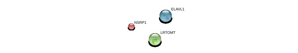 http://string-db.org/version_10/api/image/networkList?limit=0&targetmode=proteins&caller_identity=gene_cards&network_flavor=evidence&identifiers=9606.ENSP00000305742%0d%0a9606.ENSP00000385269%0d%0a9606.ENSP00000247026%0d%0a