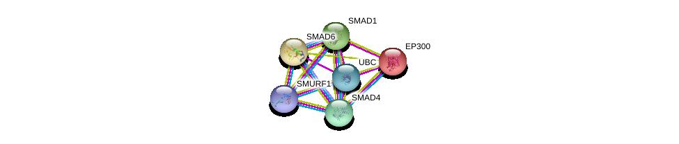 http://string-db.org/version_10/api/image/networkList?limit=0&targetmode=proteins&caller_identity=gene_cards&network_flavor=evidence&identifiers=9606.ENSP00000305769%0d%0a9606.ENSP00000344818%0d%0a9606.ENSP00000341551%0d%0a9606.ENSP00000354621%0d%0a9606.ENSP00000263253%0d%0a9606.ENSP00000288840%0d%0a