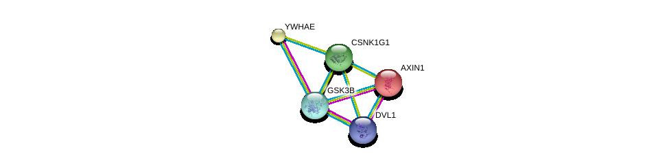 http://string-db.org/version_10/api/image/networkList?limit=0&targetmode=proteins&caller_identity=gene_cards&network_flavor=evidence&identifiers=9606.ENSP00000305777%0d%0a9606.ENSP00000368169%0d%0a9606.ENSP00000368169%0d%0a9606.ENSP00000262320%0d%0a9606.ENSP00000324806%0d%0a9606.ENSP00000264335%0d%0a