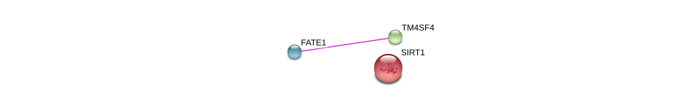 http://string-db.org/version_10/api/image/networkList?limit=0&targetmode=proteins&caller_identity=gene_cards&network_flavor=evidence&identifiers=9606.ENSP00000305852%0d%0a9606.ENSP00000359375%0d%0a9606.ENSP00000212015%0d%0a