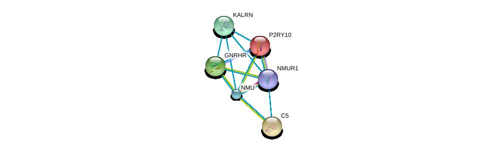 http://string-db.org/version_10/api/image/networkList?limit=0&targetmode=proteins&caller_identity=gene_cards&network_flavor=evidence&identifiers=9606.ENSP00000305877%0d%0a9606.ENSP00000264218%0d%0a9606.ENSP00000171757%0d%0a9606.ENSP00000223642%0d%0a9606.ENSP00000226413%0d%0a9606.ENSP00000240874%0d%0a