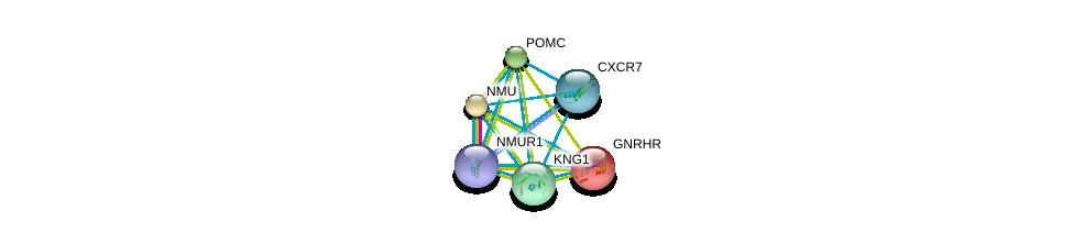http://string-db.org/version_10/api/image/networkList?limit=0&targetmode=proteins&caller_identity=gene_cards&network_flavor=evidence&identifiers=9606.ENSP00000305877%0d%0a9606.ENSP00000264218%0d%0a9606.ENSP00000226413%0d%0a9606.ENSP00000272928%0d%0a9606.ENSP00000264708%0d%0a9606.ENSP00000265023%0d%0a