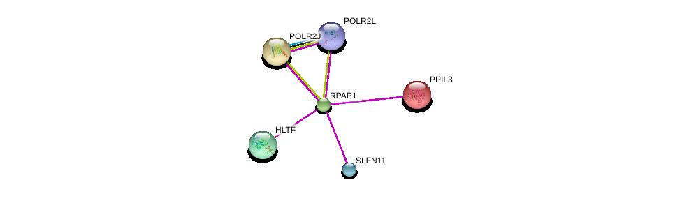 http://string-db.org/version_10/api/image/networkList?limit=0&targetmode=proteins&caller_identity=gene_cards&network_flavor=evidence&identifiers=9606.ENSP00000306123%0d%0a9606.ENSP00000286175%0d%0a9606.ENSP00000324124%0d%0a9606.ENSP00000292614%0d%0a9606.ENSP00000308944%0d%0a9606.ENSP00000312402%0d%0a