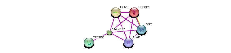 http://string-db.org/version_10/api/image/networkList?limit=0&targetmode=proteins&caller_identity=gene_cards&network_flavor=evidence&identifiers=9606.ENSP00000306320%0d%0a9606.ENSP00000361186%0d%0a9606.ENSP00000255631%0d%0a9606.ENSP00000264718%0d%0a9606.ENSP00000362824%0d%0a9606.ENSP00000386284%0d%0a