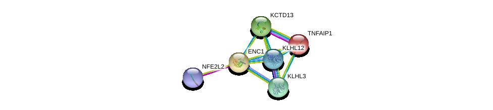 http://string-db.org/version_10/api/image/networkList?limit=0&targetmode=proteins&caller_identity=gene_cards&network_flavor=evidence&identifiers=9606.ENSP00000306356%0d%0a9606.ENSP00000380252%0d%0a9606.ENSP00000356230%0d%0a9606.ENSP00000226225%0d%0a9606.ENSP00000312397%0d%0a9606.ENSP00000311202%0d%0a