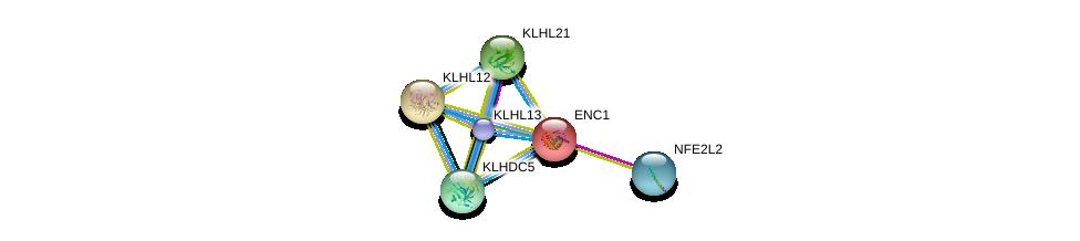 http://string-db.org/version_10/api/image/networkList?limit=0&targetmode=proteins&caller_identity=gene_cards&network_flavor=evidence&identifiers=9606.ENSP00000306356%0d%0a9606.ENSP00000380252%0d%0a9606.ENSP00000370671%0d%0a9606.ENSP00000443191%0d%0a9606.ENSP00000366886%0d%0a9606.ENSP00000356230%0d%0a