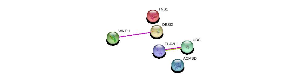http://string-db.org/version_10/api/image/networkList?limit=0&targetmode=proteins&caller_identity=gene_cards&network_flavor=evidence&identifiers=9606.ENSP00000306528%0d%0a9606.ENSP00000325526%0d%0a9606.ENSP00000344818%0d%0a9606.ENSP00000385269%0d%0a9606.ENSP00000348459%0d%0a9606.ENSP00000171887%0d%0a