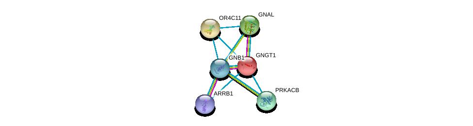 http://string-db.org/version_10/api/image/networkList?limit=0&targetmode=proteins&caller_identity=gene_cards&network_flavor=evidence&identifiers=9606.ENSP00000306651%0d%0a9606.ENSP00000334051%0d%0a9606.ENSP00000367869%0d%0a9606.ENSP00000248572%0d%0a9606.ENSP00000359719%0d%0a9606.ENSP00000409581%0d%0a