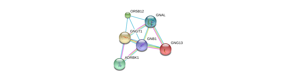 http://string-db.org/version_10/api/image/networkList?limit=0&targetmode=proteins&caller_identity=gene_cards&network_flavor=evidence&identifiers=9606.ENSP00000306657%0d%0a9606.ENSP00000367869%0d%0a9606.ENSP00000248572%0d%0a9606.ENSP00000334051%0d%0a9606.ENSP00000248150%0d%0a9606.ENSP00000312262%0d%0a