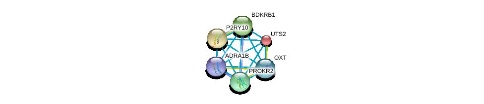 http://string-db.org/version_10/api/image/networkList?limit=0&targetmode=proteins&caller_identity=gene_cards&network_flavor=evidence&identifiers=9606.ENSP00000306662%0d%0a9606.ENSP00000054668%0d%0a9606.ENSP00000171757%0d%0a9606.ENSP00000216629%0d%0a9606.ENSP00000217270%0d%0a9606.ENSP00000217386%0d%0a