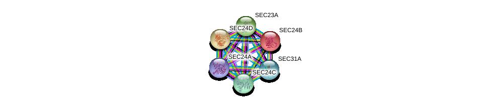 http://string-db.org/version_10/api/image/networkList?limit=0&targetmode=proteins&caller_identity=gene_cards&network_flavor=evidence&identifiers=9606.ENSP00000306881%0d%0a9606.ENSP00000280551%0d%0a9606.ENSP00000381823%0d%0a9606.ENSP00000321845%0d%0a9606.ENSP00000265175%0d%0a9606.ENSP00000347329%0d%0a
