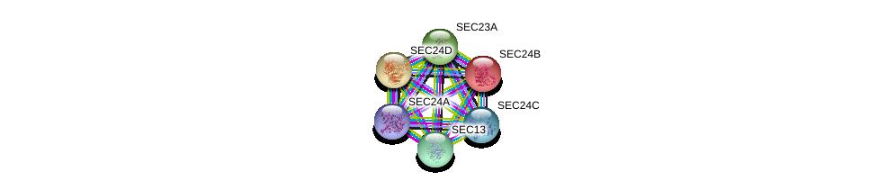 http://string-db.org/version_10/api/image/networkList?limit=0&targetmode=proteins&caller_identity=gene_cards&network_flavor=evidence&identifiers=9606.ENSP00000306881%0d%0a9606.ENSP00000381823%0d%0a9606.ENSP00000265175%0d%0a9606.ENSP00000321845%0d%0a9606.ENSP00000280551%0d%0a9606.ENSP00000312122%0d%0a