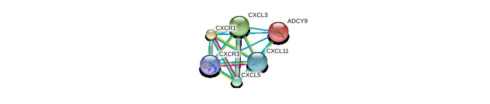 http://string-db.org/version_10/api/image/networkList?limit=0&targetmode=proteins&caller_identity=gene_cards&network_flavor=evidence&identifiers=9606.ENSP00000306884%0d%0a9606.ENSP00000362795%0d%0a9606.ENSP00000294016%0d%0a9606.ENSP00000295683%0d%0a9606.ENSP00000296026%0d%0a9606.ENSP00000296027%0d%0a