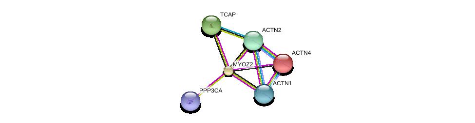 http://string-db.org/version_10/api/image/networkList?limit=0&targetmode=proteins&caller_identity=gene_cards&network_flavor=evidence&identifiers=9606.ENSP00000306997%0d%0a9606.ENSP00000252699%0d%0a9606.ENSP00000355537%0d%0a9606.ENSP00000377941%0d%0a9606.ENSP00000312624%0d%0a9606.ENSP00000378323%0d%0a