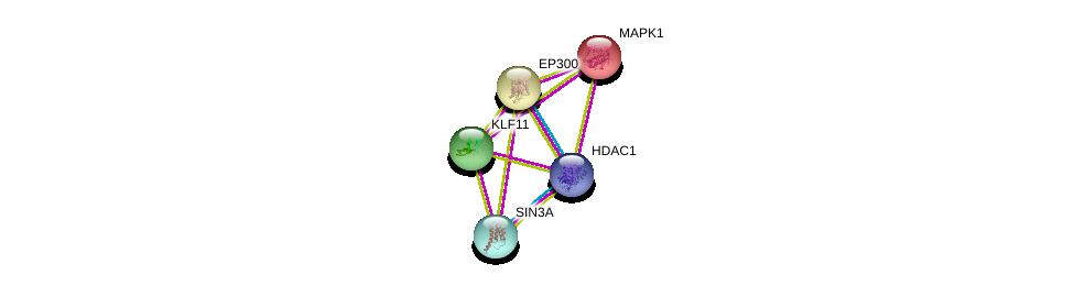 http://string-db.org/version_10/api/image/networkList?limit=0&targetmode=proteins&caller_identity=gene_cards&network_flavor=evidence&identifiers=9606.ENSP00000307023%0d%0a9606.ENSP00000353622%0d%0a9606.ENSP00000215832%0d%0a9606.ENSP00000362649%0d%0a9606.ENSP00000263253%0d%0a9606.ENSP00000263253%0d%0a