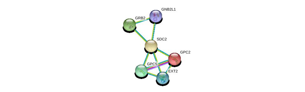http://string-db.org/version_10/api/image/networkList?limit=0&targetmode=proteins&caller_identity=gene_cards&network_flavor=evidence&identifiers=9606.ENSP00000307046%0d%0a9606.ENSP00000379032%0d%0a9606.ENSP00000366267%0d%0a9606.ENSP00000292377%0d%0a9606.ENSP00000339007%0d%0a9606.ENSP00000426909%0d%0a
