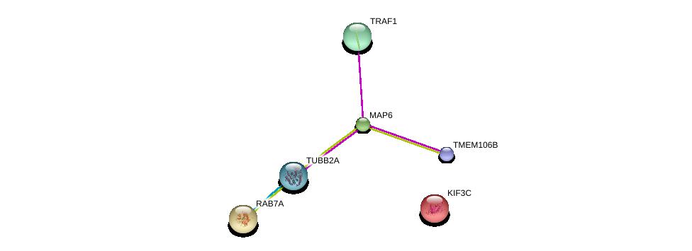 http://string-db.org/version_10/api/image/networkList?limit=0&targetmode=proteins&caller_identity=gene_cards&network_flavor=evidence&identifiers=9606.ENSP00000307093%0d%0a9606.ENSP00000362994%0d%0a9606.ENSP00000369703%0d%0a9606.ENSP00000264712%0d%0a9606.ENSP00000265062%0d%0a9606.ENSP00000379901%0d%0a
