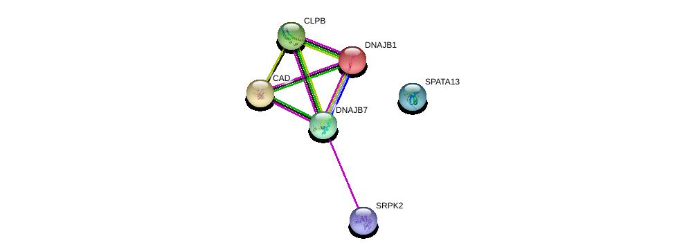 http://string-db.org/version_10/api/image/networkList?limit=0&targetmode=proteins&caller_identity=gene_cards&network_flavor=evidence&identifiers=9606.ENSP00000307197%0d%0a9606.ENSP00000377262%0d%0a9606.ENSP00000264705%0d%0a9606.ENSP00000371542%0d%0a9606.ENSP00000294053%0d%0a9606.ENSP00000254322%0d%0a