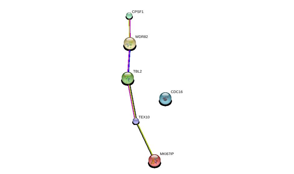 http://string-db.org/version_10/api/image/networkList?limit=0&targetmode=proteins&caller_identity=gene_cards&network_flavor=evidence&identifiers=9606.ENSP00000307260%0d%0a9606.ENSP00000296490%0d%0a9606.ENSP00000364037%0d%0a9606.ENSP00000339353%0d%0a9606.ENSP00000348554%0d%0a9606.ENSP00000285814%0d%0a