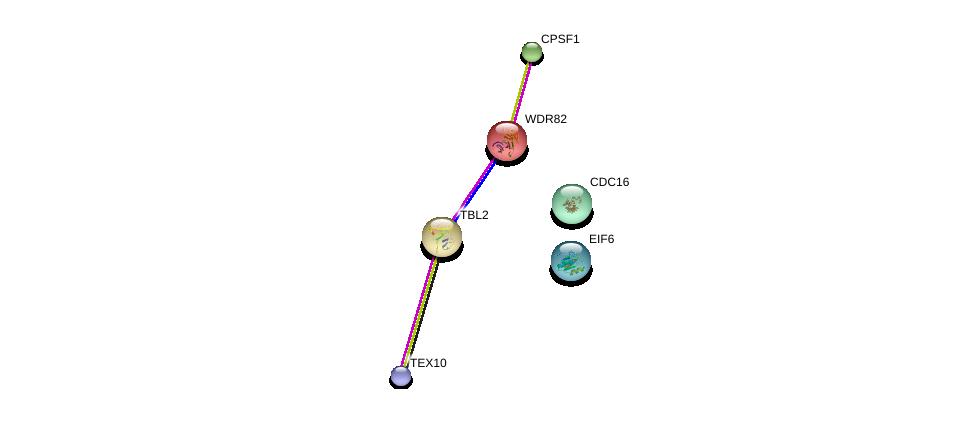 http://string-db.org/version_10/api/image/networkList?limit=0&targetmode=proteins&caller_identity=gene_cards&network_flavor=evidence&identifiers=9606.ENSP00000307260%0d%0a9606.ENSP00000296490%0d%0a9606.ENSP00000364037%0d%0a9606.ENSP00000339353%0d%0a9606.ENSP00000348554%0d%0a9606.ENSP00000363559%0d%0a