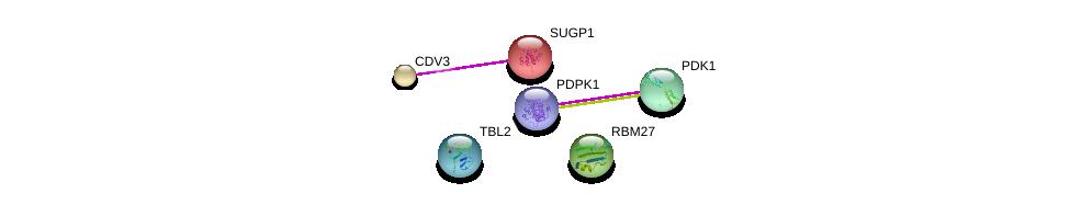 http://string-db.org/version_10/api/image/networkList?limit=0&targetmode=proteins&caller_identity=gene_cards&network_flavor=evidence&identifiers=9606.ENSP00000307260%0d%0a9606.ENSP00000344220%0d%0a9606.ENSP00000282077%0d%0a9606.ENSP00000247001%0d%0a9606.ENSP00000265271%0d%0a9606.ENSP00000264993%0d%0a