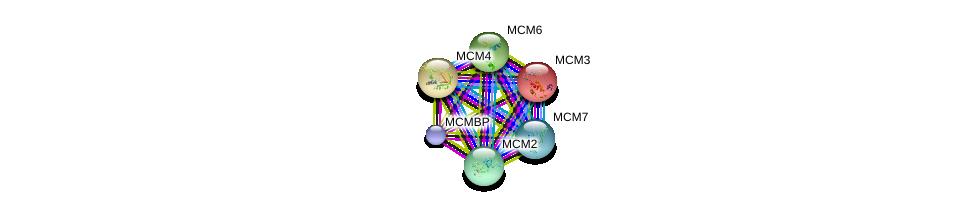 http://string-db.org/version_10/api/image/networkList?limit=0&targetmode=proteins&caller_identity=gene_cards&network_flavor=evidence&identifiers=9606.ENSP00000307288%0d%0a9606.ENSP00000353098%0d%0a9606.ENSP00000262105%0d%0a9606.ENSP00000264156%0d%0a9606.ENSP00000265056%0d%0a9606.ENSP00000229854%0d%0a