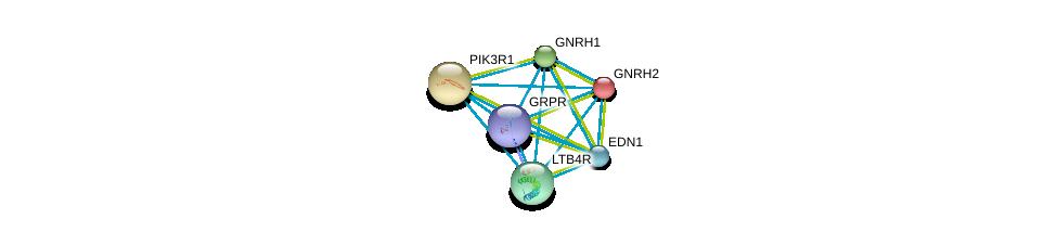 http://string-db.org/version_10/api/image/networkList?limit=0&targetmode=proteins&caller_identity=gene_cards&network_flavor=evidence&identifiers=9606.ENSP00000307445%0d%0a9606.ENSP00000274335%0d%0a9606.ENSP00000369643%0d%0a9606.ENSP00000276414%0d%0a9606.ENSP00000245983%0d%0a9606.ENSP00000368683%0d%0a