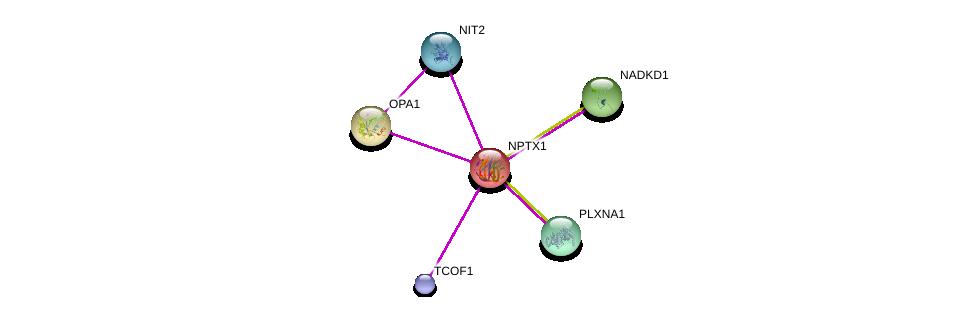 http://string-db.org/version_10/api/image/networkList?limit=0&targetmode=proteins&caller_identity=gene_cards&network_flavor=evidence&identifiers=9606.ENSP00000307549%0d%0a9606.ENSP00000354681%0d%0a9606.ENSP00000377696%0d%0a9606.ENSP00000421655%0d%0a9606.ENSP00000371362%0d%0a9606.ENSP00000377061%0d%0a