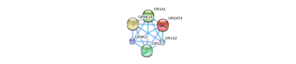 http://string-db.org/version_10/api/image/networkList?limit=0&targetmode=proteins&caller_identity=gene_cards&network_flavor=evidence&identifiers=9606.ENSP00000307598%0d%0a9606.ENSP00000305011%0d%0a9606.ENSP00000304846%0d%0a9606.ENSP00000305207%0d%0a9606.ENSP00000305424%0d%0a9606.ENSP00000305469%0d%0a