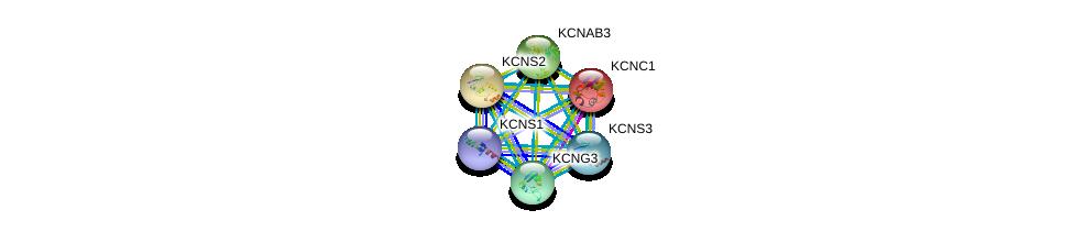 http://string-db.org/version_10/api/image/networkList?limit=0&targetmode=proteins&caller_identity=gene_cards&network_flavor=evidence&identifiers=9606.ENSP00000307694%0d%0a9606.ENSP00000265969%0d%0a9606.ENSP00000287042%0d%0a9606.ENSP00000302719%0d%0a9606.ENSP00000304127%0d%0a9606.ENSP00000305824%0d%0a
